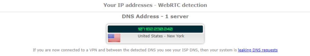 IP Leak Test - US