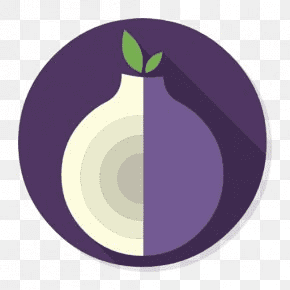 Why Use A VPN With Tor